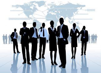 Cơ cấu tổ chức công ty TNHH 1 thành viên