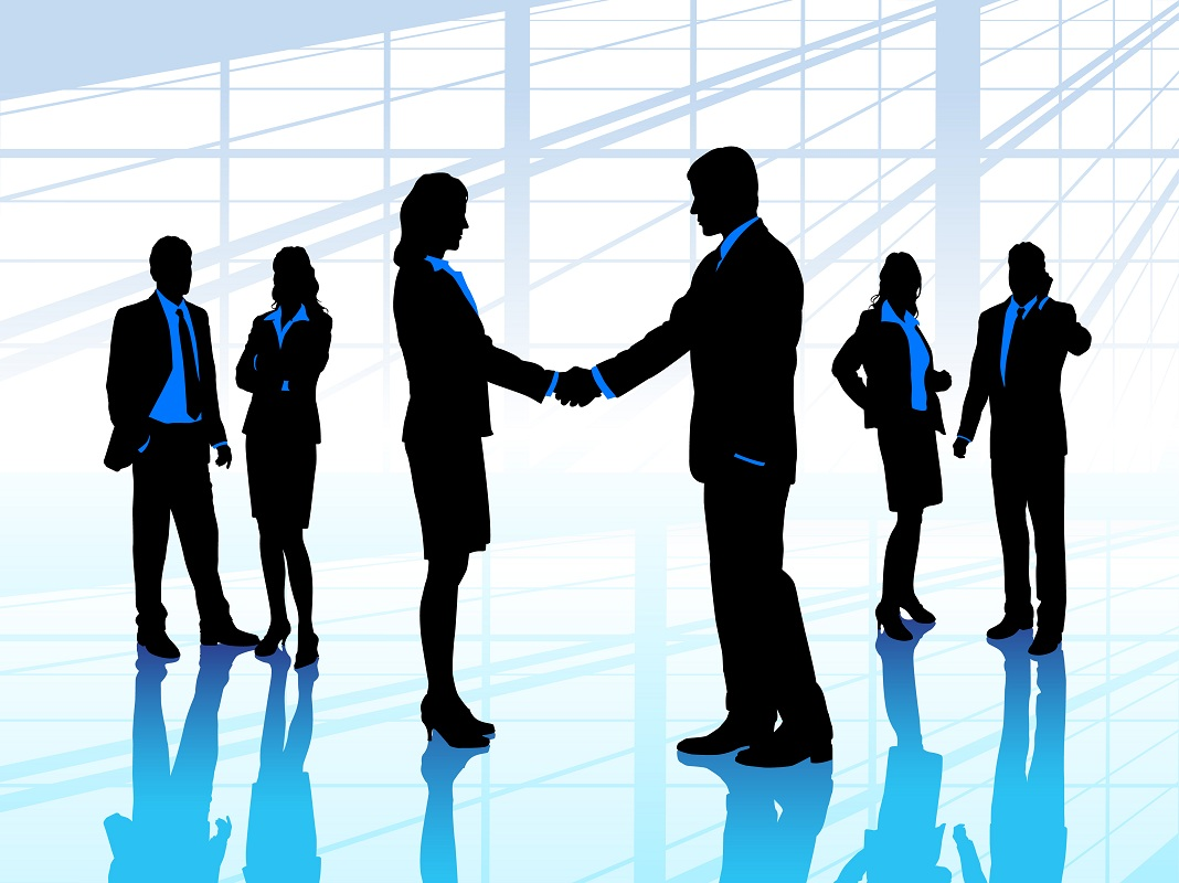 Cơ cấu tổ chức của công ty TNNH 2 thành viên trở lên