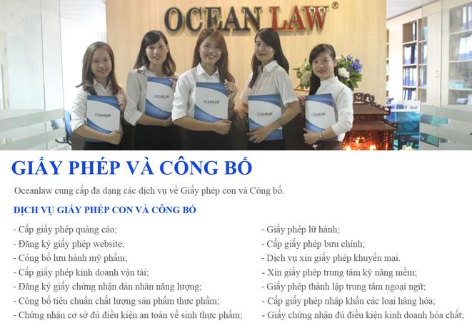 HỒ SƠ NĂNG LỰC OCEANLAW FIRM về chúng tôi Về Chúng Tôi profile oceanlaw anh16