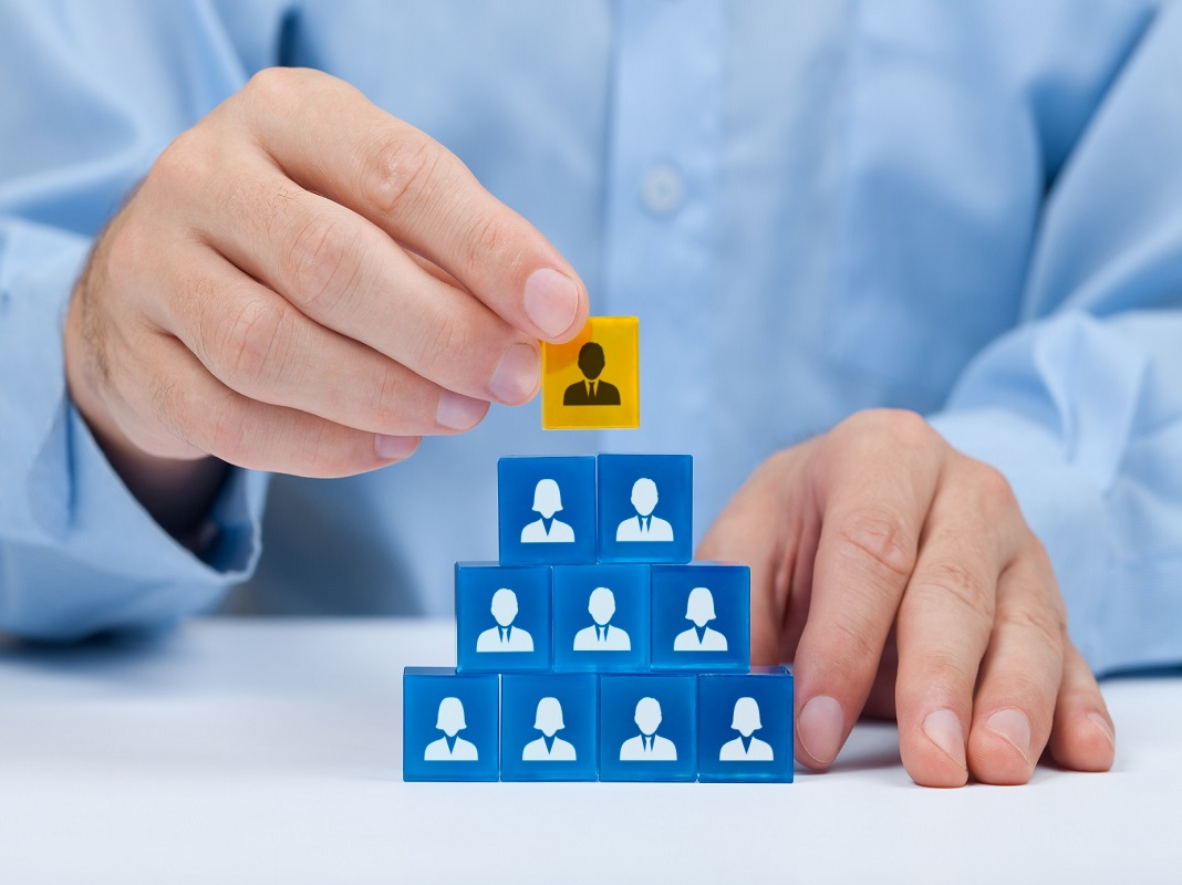Sáp nhập doanh nghiệp là gì?