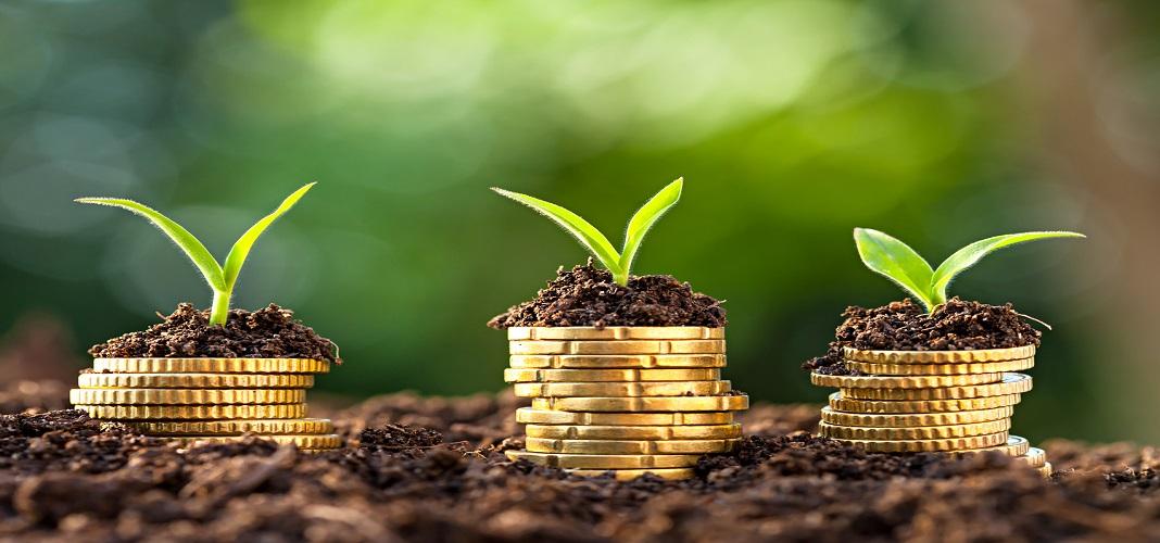 Hồ sơ thành lập công ty có vốn đầu tư nước ngoài tại việt nam